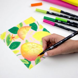 Citrus Tombow dual brush pen 10 pack new zealand lemon