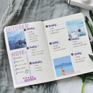 Love My Calendar bullet journal date Planner Stickers new zealand eg
