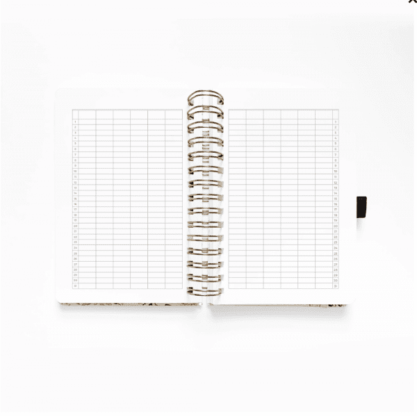Archer and Olive A5 Spiral Planner | Blush-A-Bye future log